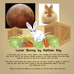 Lunar Bunny